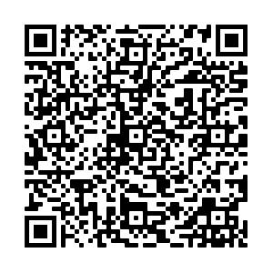 Kontaktdaten QR Code